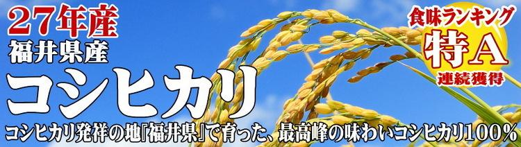 fukuikosi-ta2015-900-255.jpg